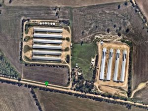 commercial Solar Agribusiness South Australia 1