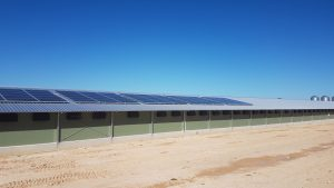 commercial Solar Agribusiness South Australia 3
